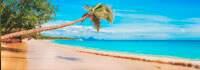 agencia de viagens e turismo em sp menu america central caribe